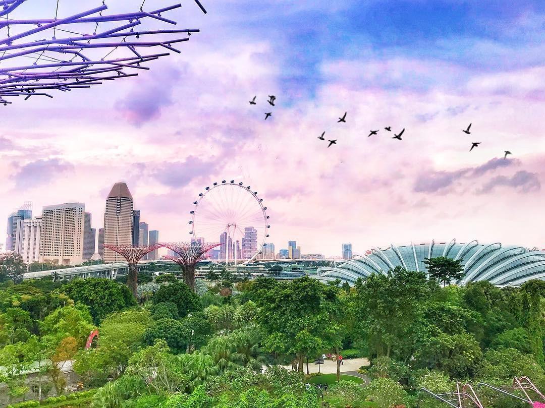 đi singapore có cần visa không